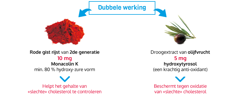 double-action-nl
